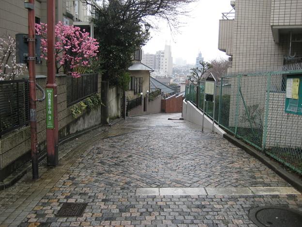 11.03.22.富士見坂(荒川区西日暮里)