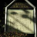 Photos: 10.11.11.本行寺(荒川区西日暮里3丁目)
