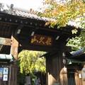 Photos: 10.11.11.本行寺(荒川区西日暮里3丁目)山門