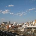 Photos: 10.11.11.本行寺(荒川区西日暮里3丁目)境内より
