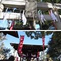 Photos: 13.01.04.尾久八幡神社(荒川区西尾久)厳島神社