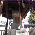 Photos: 尾久八幡神社(荒川区西尾久)厳島神社