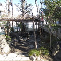 Photos: 尾久八幡神社(荒川区西尾久)厳島神社 ・神池? 八幡堀跡?