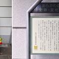 Photos: 13.10.09.浄閑寺(南千住2丁目)山門