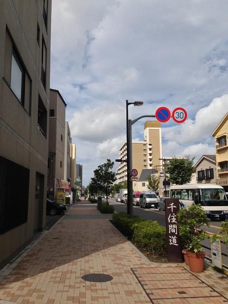 13.10.09.王子電気軌道 路線跡/千住間道(荒川区道104号線)