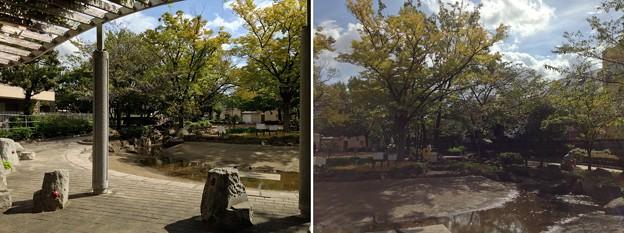 13.10.09.天王公園/米倉丹後守家下屋敷跡(南千住6丁目)