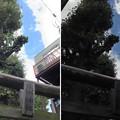 Photos: 13.10.09.南千住熊野神社(南千住6丁目)