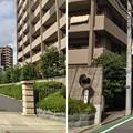 Photos: 13.10.09.日慶寺(南千住7丁目)