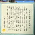 Photos: 南千住日枝神社(山王清兵衛(歯神清兵衛)。南千住7丁目)