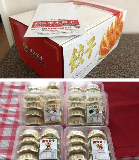 宇都宮餃子 健太餃子