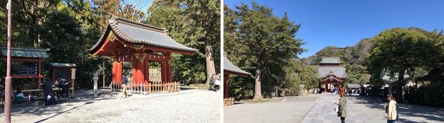鶴岡八幡宮(鎌倉市)参道・手水場
