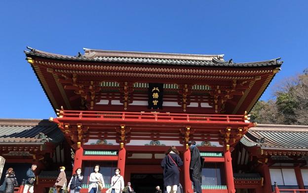 Photos: 鶴岡八幡宮(鎌倉市)随神門