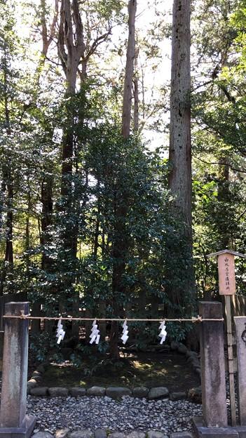 鶴岡八幡宮(鎌倉市)由比若宮遥拝所