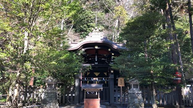 鶴岡八幡宮(鎌倉市)白旗神社
