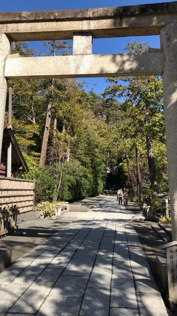 鶴岡八幡宮(鎌倉市)白旗神社参道