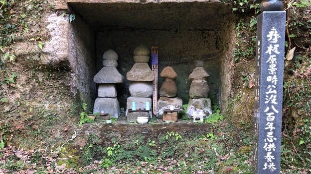 Photos: 梶原一族墓(鎌倉市立深沢小学校内)