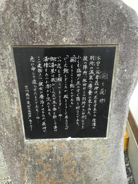 15.03.17.大湯 葵の湯 別所温泉(上田市)