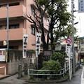 縁切榎(板橋区)第六天神社