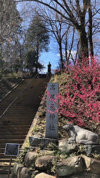 Photos: 高尾天神社/初沢城(八王子市)