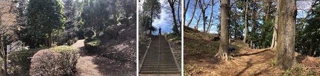 Photos: 高尾天神社/初沢城(八王子市)腰郭