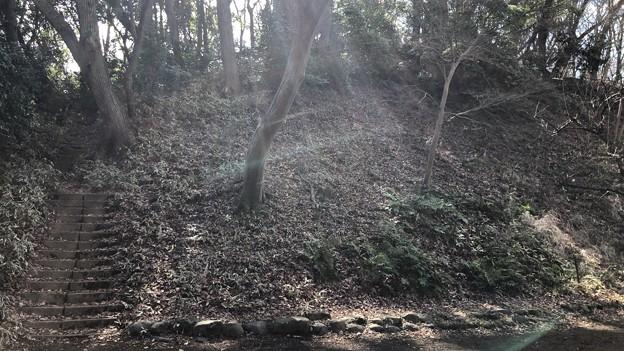 高尾天神社/初沢城(八王子市)北郭2