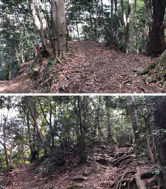 Photos: 初沢城(八王子市)南物見