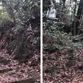 Photos: 初沢城(八王子市)本郭東腰郭2