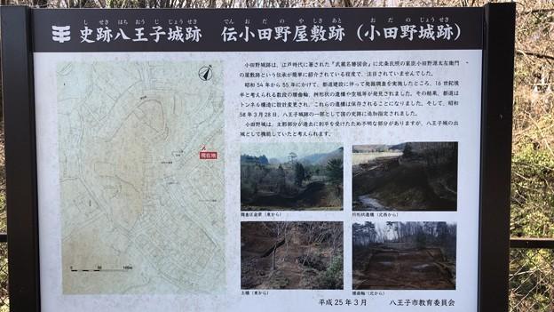 観栖寺台公園(八王子市)より小田野城