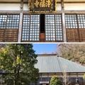 Photos: 浄福寺本堂/大石家 居館跡or士屋敷跡(説)(八王子市)