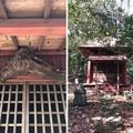 Photos: 浄福寺 観音堂(八王子市)