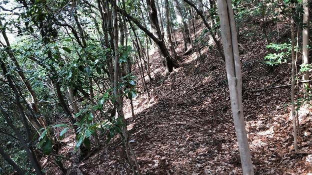 浄福寺城(八王子市)先に竪堀