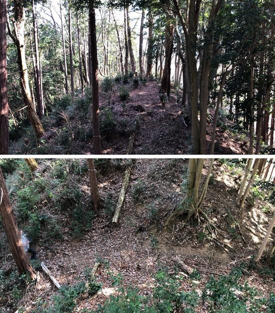 Photos: 浄福寺城 大手説(八王子市)大手郭 大堀切 ・物見郭?