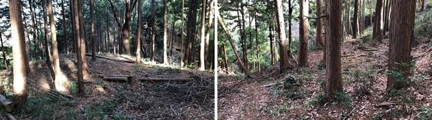 Photos: 浄福寺城 大手説(八王子市)大手郭大手口 出櫓