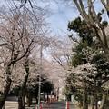 20.03.30.御殿山(品川区)JR線路