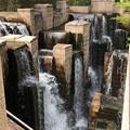 Photos: 20.03.30.御殿山(品川区)御殿山庭園の滝