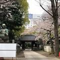 20.03.30.品川寺(南品川)参道