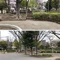 大井公園内古墳(品川区)