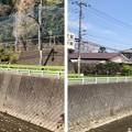 Photos: 八王子城 搦手(八王子市)陣馬街道・北浅川
