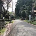 Photos: 八王子城 搦手門跡(八王子市)