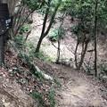 Photos: 八王子城 犬走(八王子市)