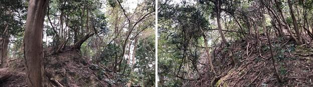 Photos: 八王子城 大堀切(八王子市)