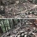 Photos: 八王子城(八王子市)尾根道