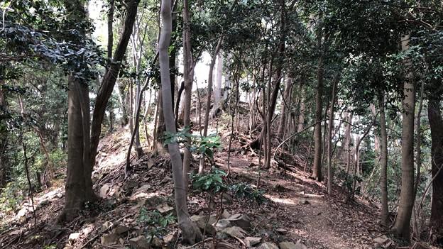 Photos: 八王子城 (八王子市)尾根道