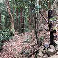 Photos: 八王子城 郭(八王子市)搦手分岐