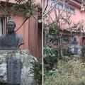 Photos: 小島資料館(町田市)近藤勇胸像