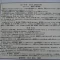 Photos: 11.03.14.鷲神社(浅草 お酉様)(台東区千束)