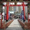Photos: 鷲神社(浅草 お酉様)(台東区千束)