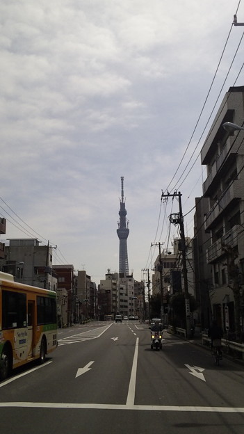 土手通り 吉原大門交差点より(台東区)