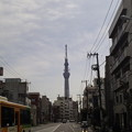 Photos: 土手通り 吉原大門交差点より(台東区)