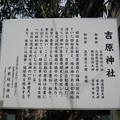11.03.14.吉原神社(台東区)